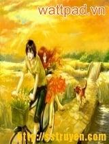 Vườn cúc mùa thu